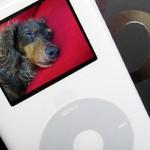 新型 iPod