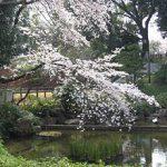 原宿 東郷記念館