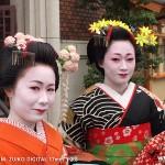 舞妓はん。英語だとJapanese dancing girl。う〜む。