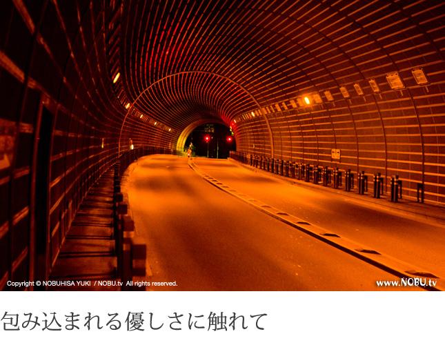僕らはトンネル探偵団 – 乃木坂トンネル(南青山側)