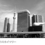 Leica X2 試し撮り(モノクローム)