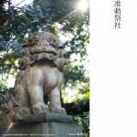 東京十社巡り-1-赤坂氷川神社