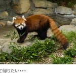 江戸川区自然動物園(1)