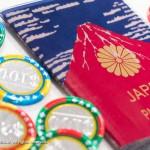 パスポート ケース 赤富士